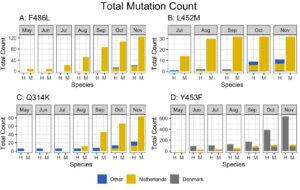 covid mutations
